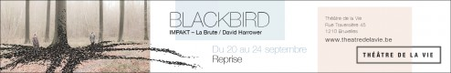 tdlv-16-17-banner-blackbird-avec-filet