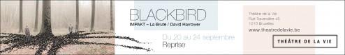 tdlv-16-17-banner-blackbird-avec-filet